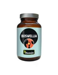 Boswellia Extract 65% - 500mg 180 caps - Hanoju